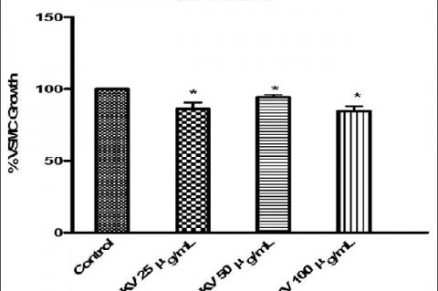 Effects of 24 h incubation of vascular smooth muscle cell with kolaviron (25–100 μg/mL) on cell growth